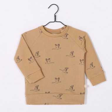 Sweatshirt oies sauvages gold pour enfants de la marque Les petites choses