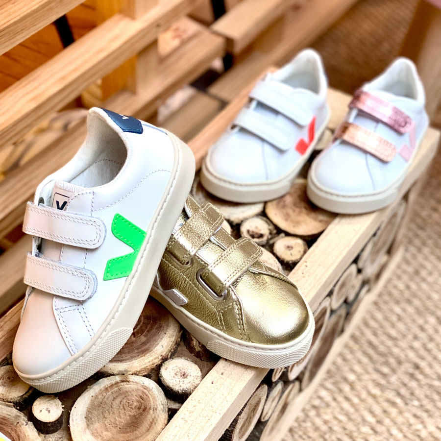 Collection sneakesr Veja